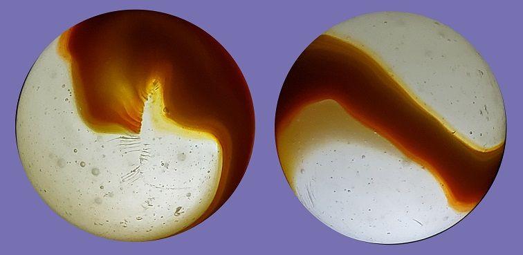 Orange Shooter backlit R.jpg